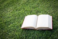 часов-книга-вверх-открытая-пустая-на-по-е-травы-45490403.jpg